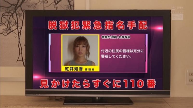 恋上美逃犯插图221