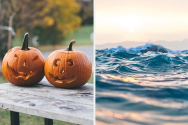 Plan The Perfect Fall Day And We'll Tell You Which Zodiac Element You Are