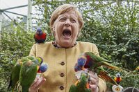 These Pics Of Angela Merkel Covered In Birds Are Now A Meme And It's Sehr Gut