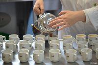 Ce café est aussi bon qu'un arabica ET adapté au réchauffement climatique
