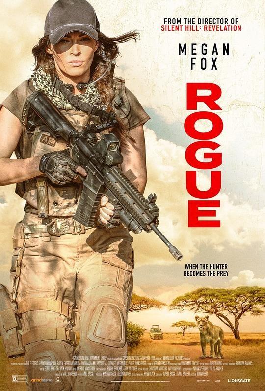 侠盗 Rogue