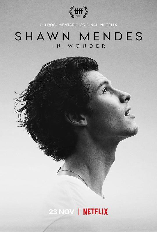 肖恩·门德斯:一路走来 Shawn Mendes: In Wonder