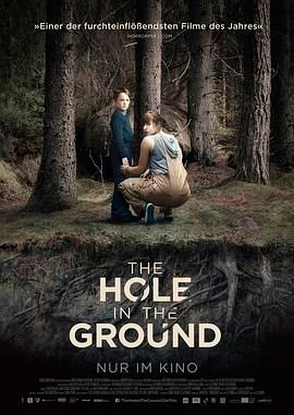 地面之洞.The Hole in the Ground.2019.恐怖.爱尔兰