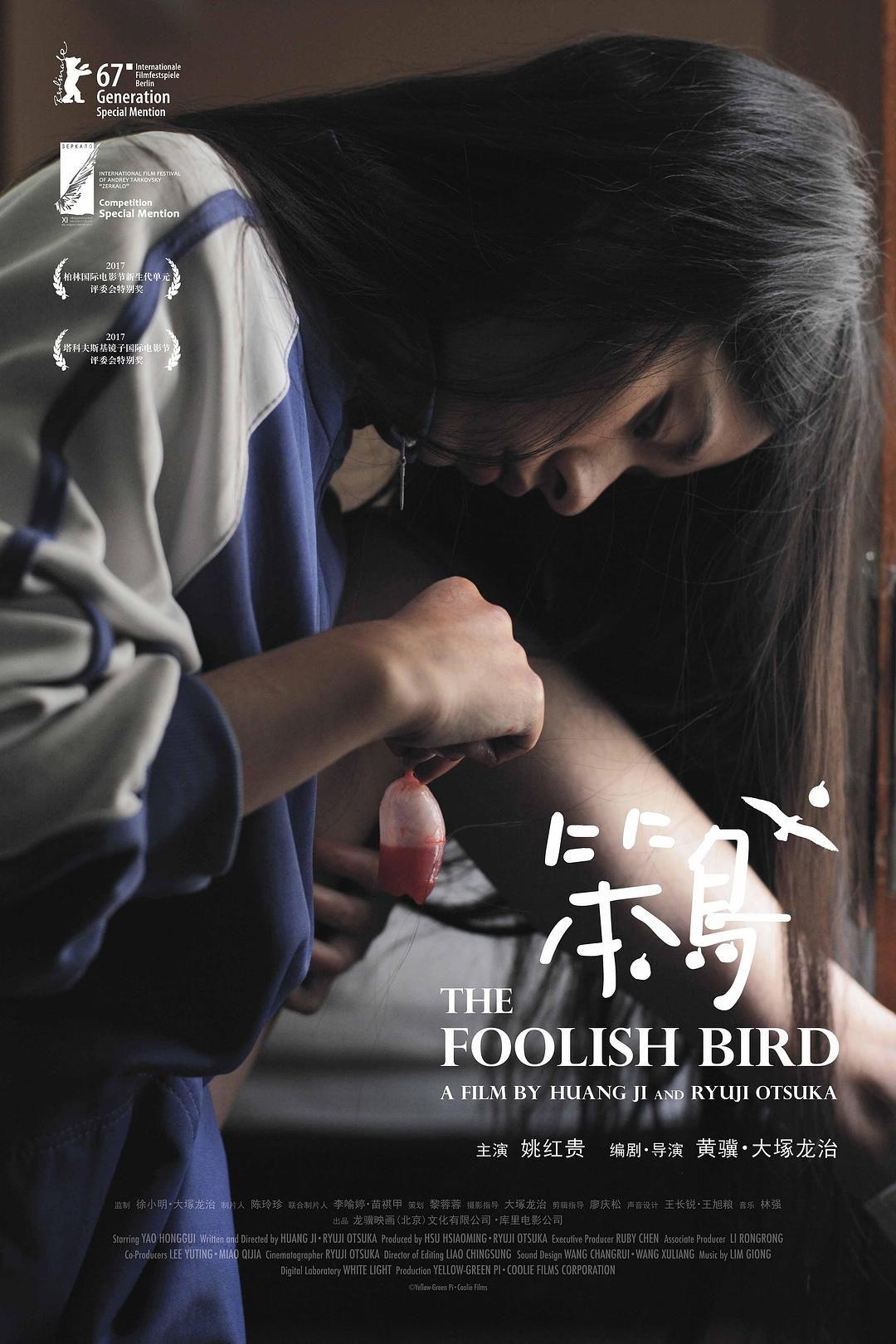 2017国产6.8分剧情《笨鸟》HD1080p.国语中字