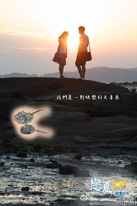 恋夏38℃封面图片