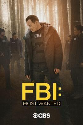 联邦调查局通缉要犯第二季