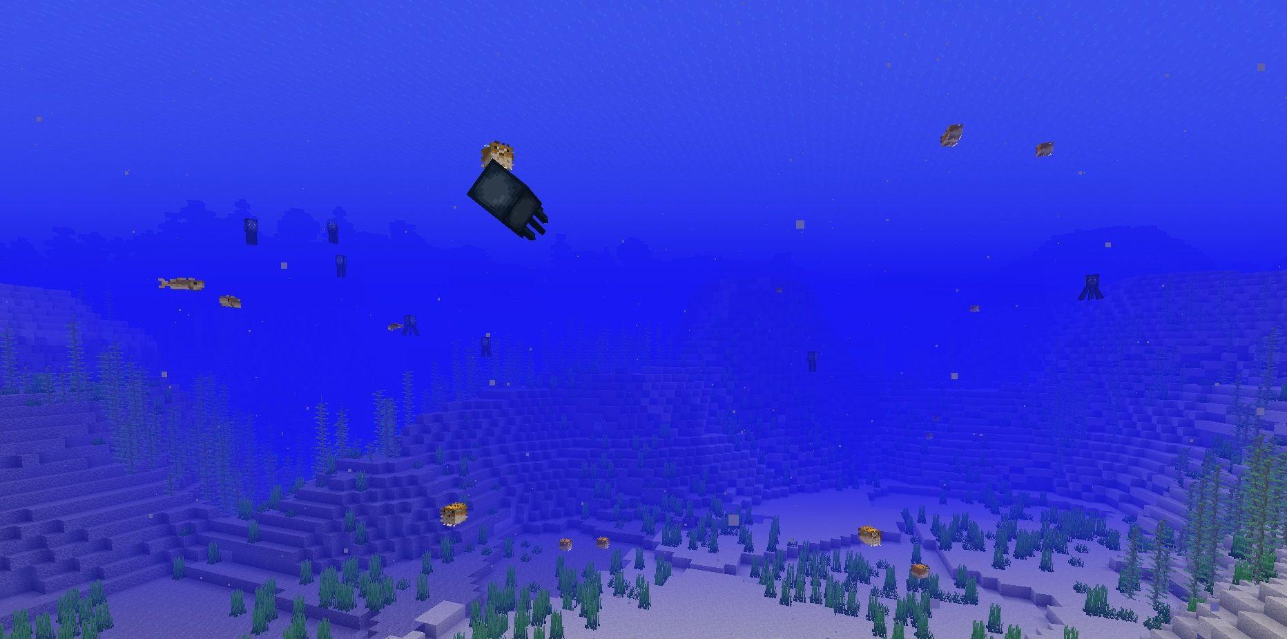 aktualizacja oceanu nowe biomy letni ocean 2