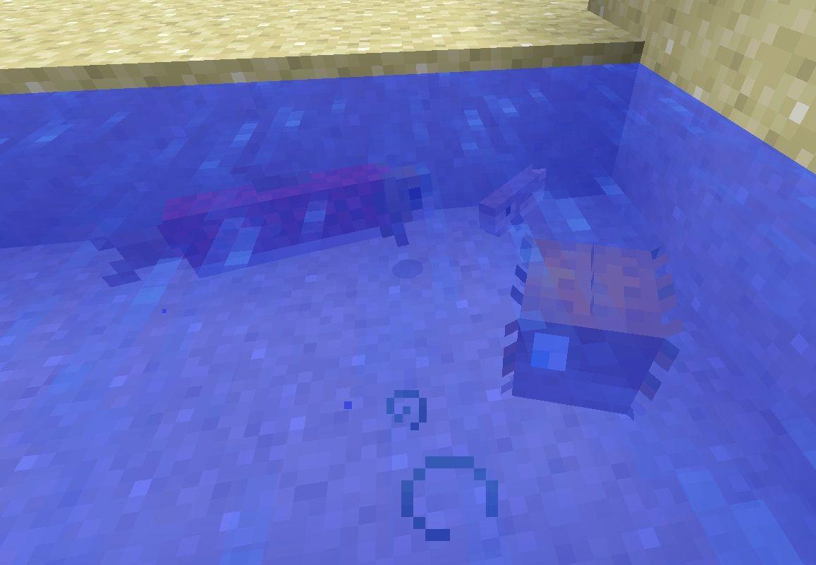 dorsz rozdymka losos minecraft nowe ryby