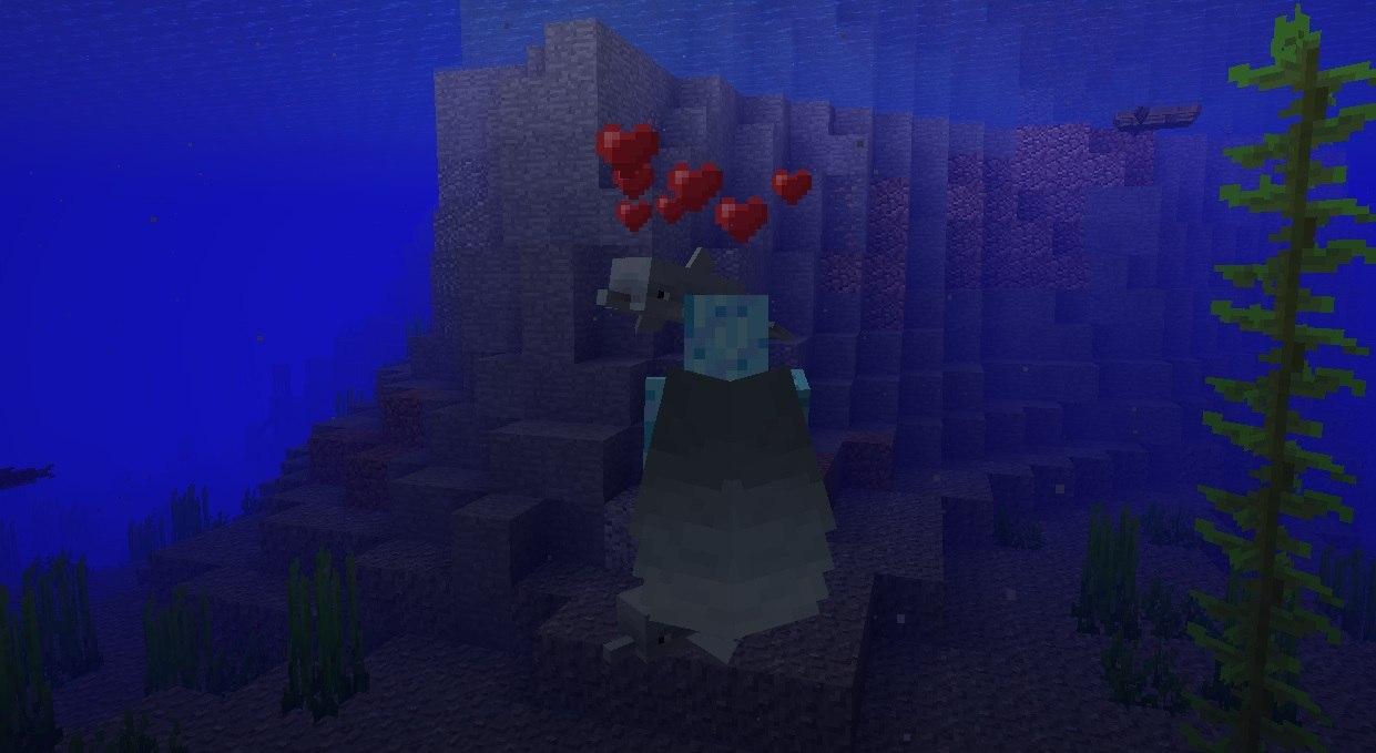 karmienie delfina surowym dorszem minecraft