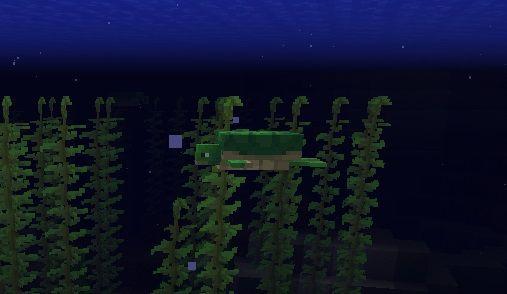 maly zolw pod woda minecraft 1.13