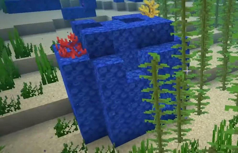 rafa koralowa naturalnie generowana minecraft 1.13 img 2