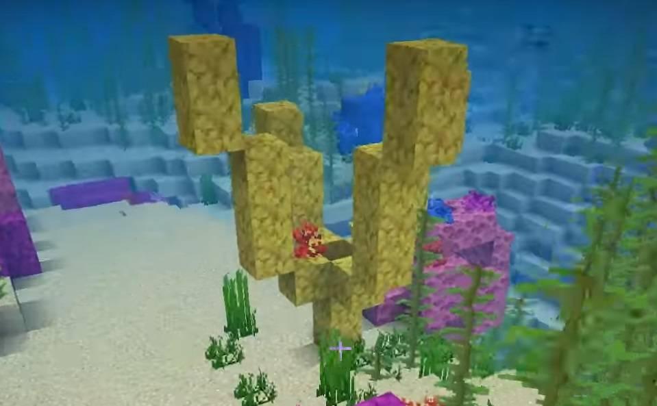rafa koralowa naturalnie generowana minecraft 1.13 img 3