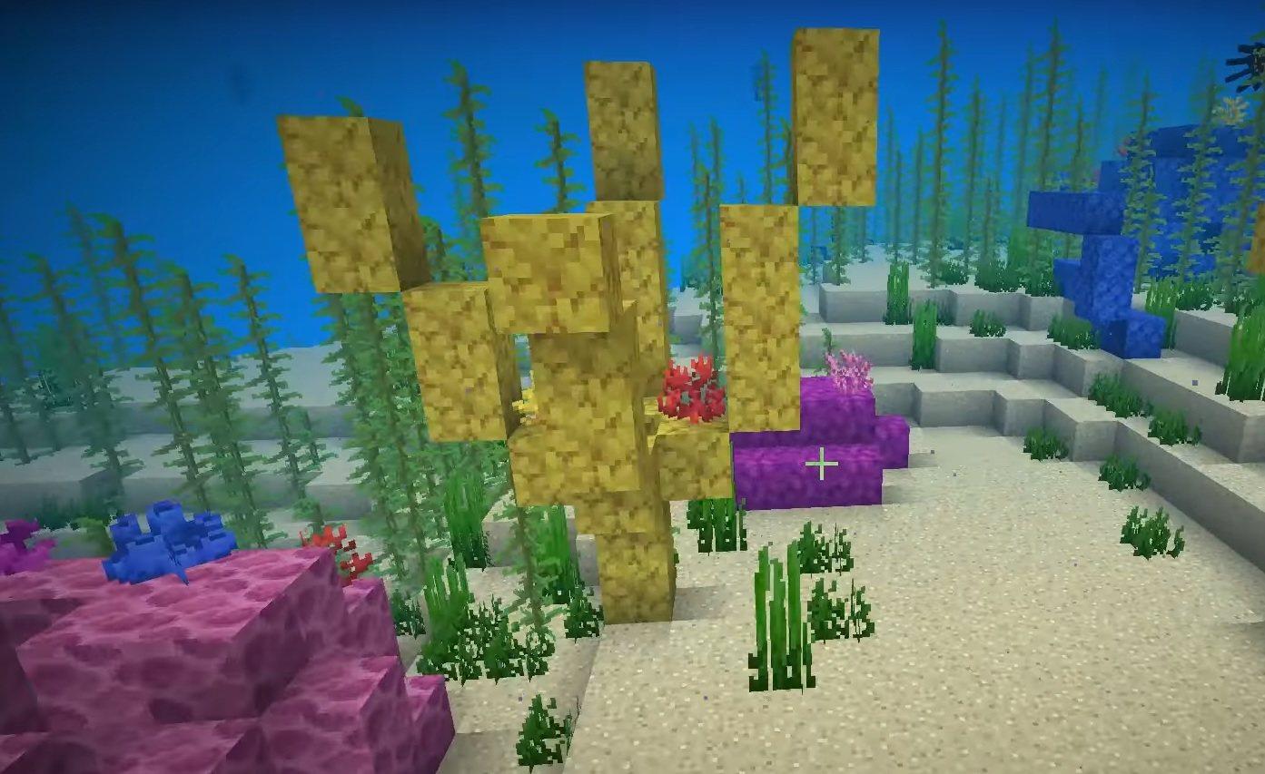 rafa koralowa naturalnie generowana minecraft 1.13
