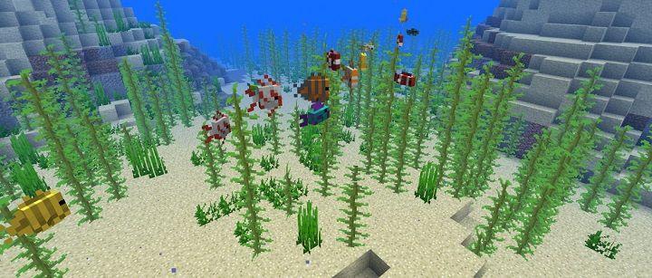 snapshot 18w10a nowa tropikalna ryba skarby rosliny koralowe