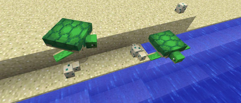 zolwie trojzab fantom rafa koralowa minecraft aktualizacja oceanu