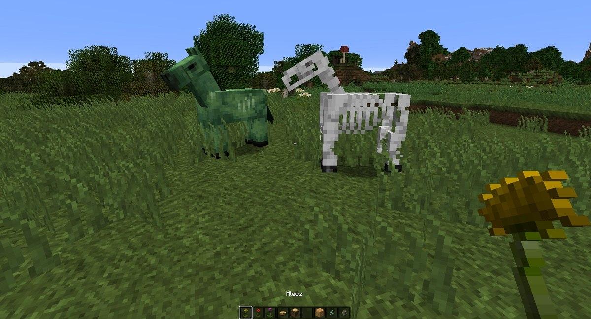 nowa tekstura konia szieleta i konia zombie minecraft