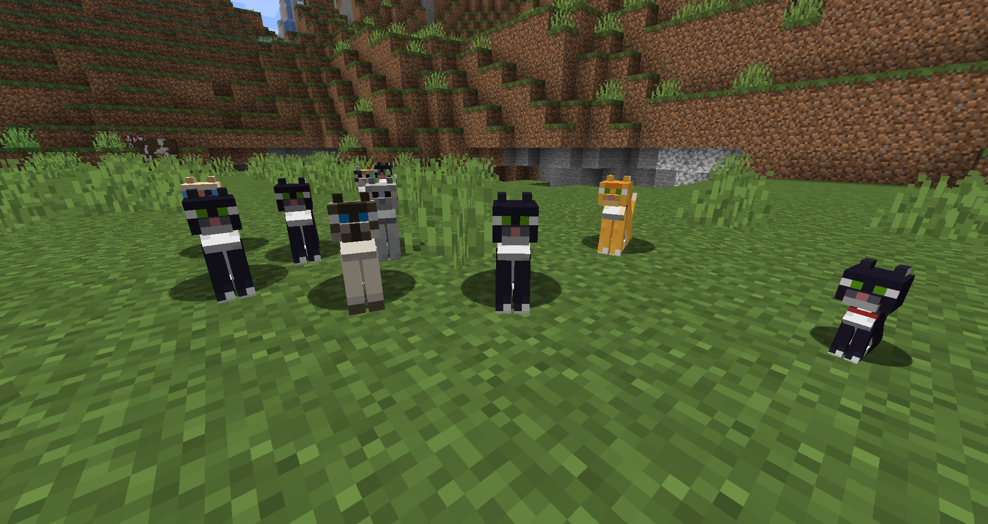 nowe koty minecraft 1.14