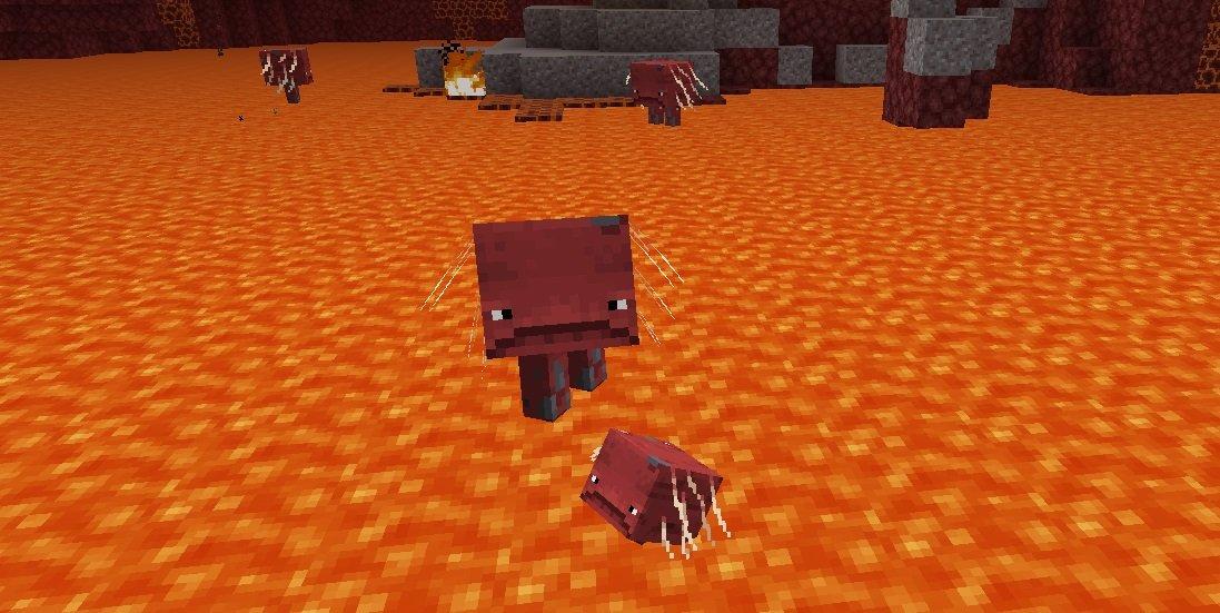 magmołaz strider oraz baby strider w lawie netheru minecraft