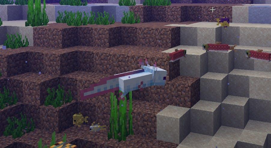 axolotl minecraft 1.17
