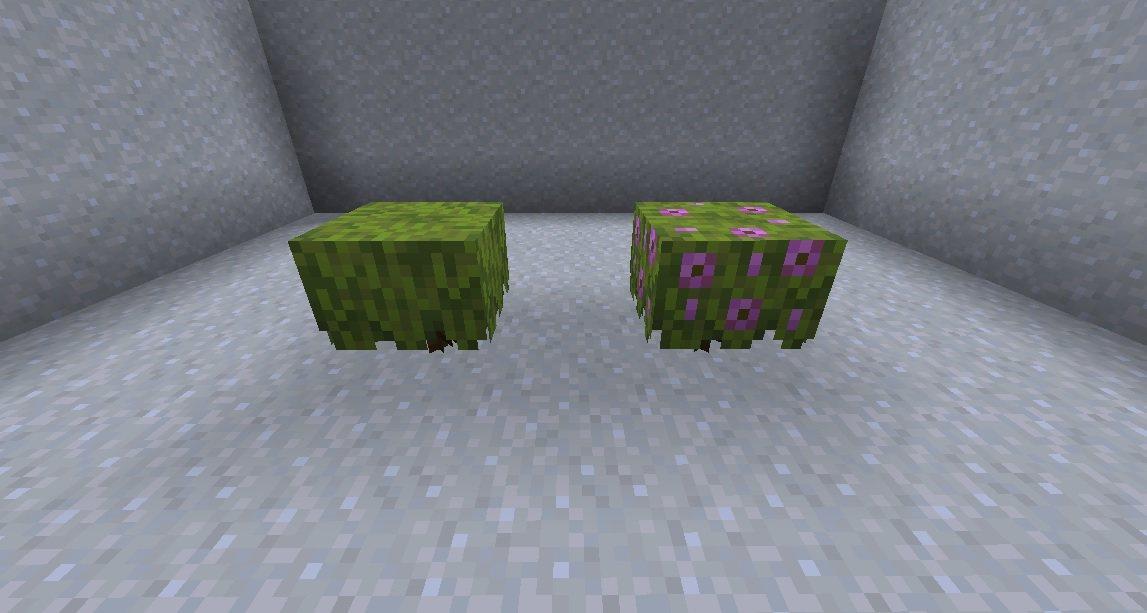 azalia kwitnaca azalia snapshot 21w05a minecraft