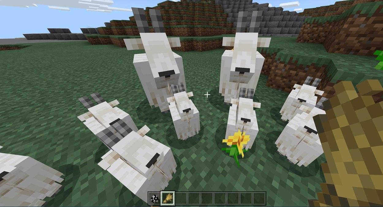 koza w minecraft beta karmienie koz przenica