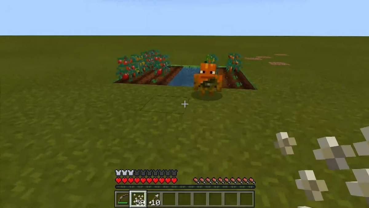 minecraft bedrock pomidor 2