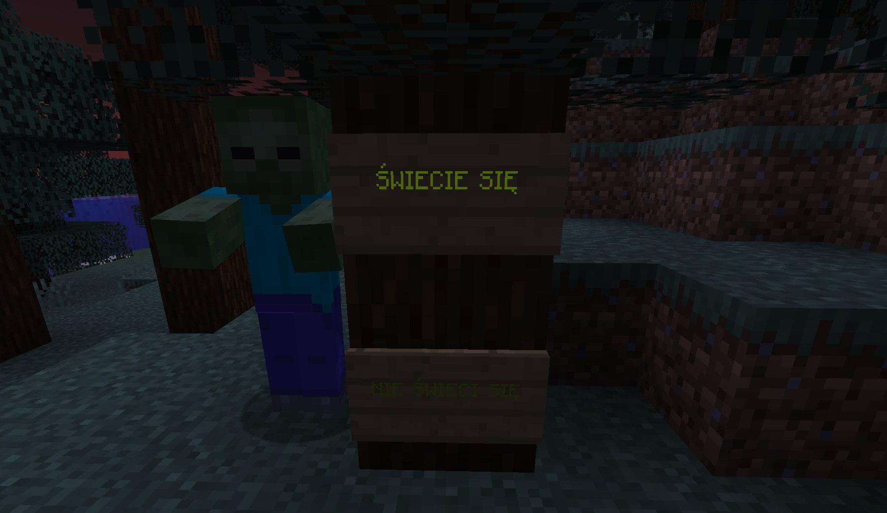 swiecacy napis 21w03a minecraft 1.17