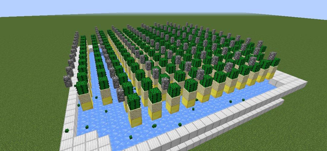 automatyczna_farma_kaktusow_14.png
