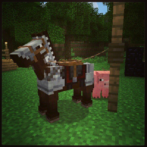 aktualizacja-konie-minecraft-1.6-pvp