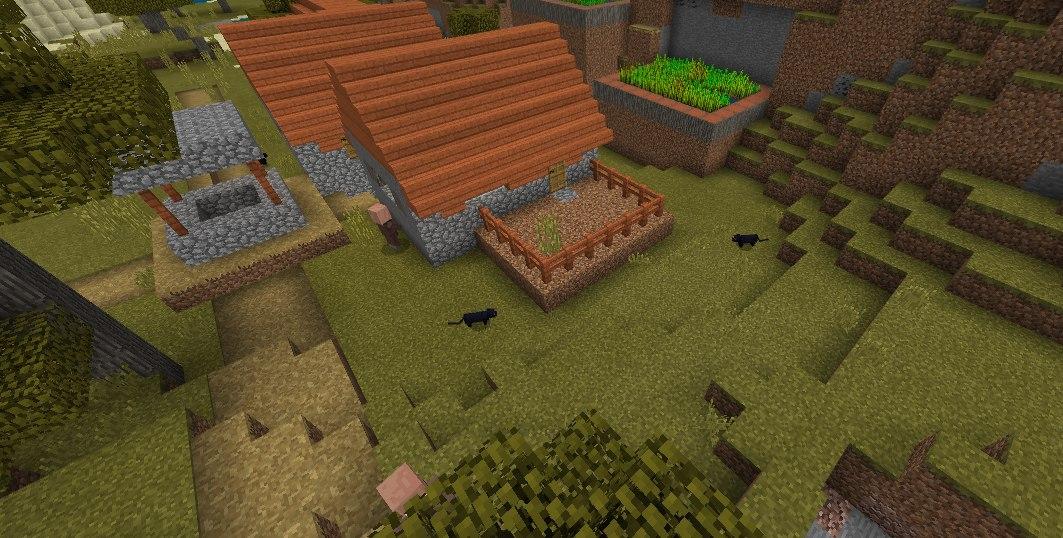 koty w wioskach