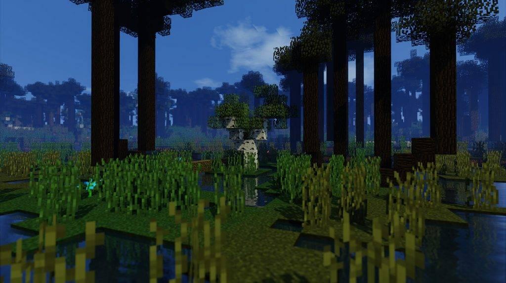 ostatnie drzewo 3