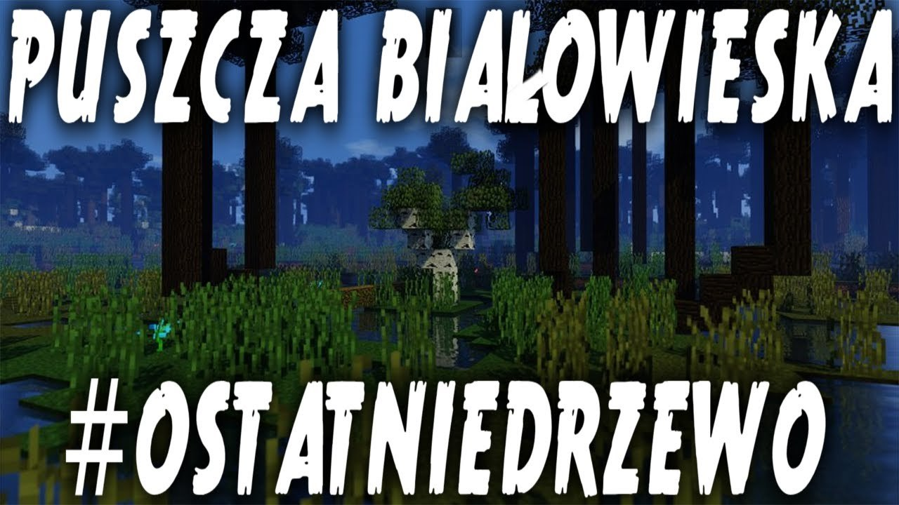 puszcza bialowieska minecraft ostatnie drzewo