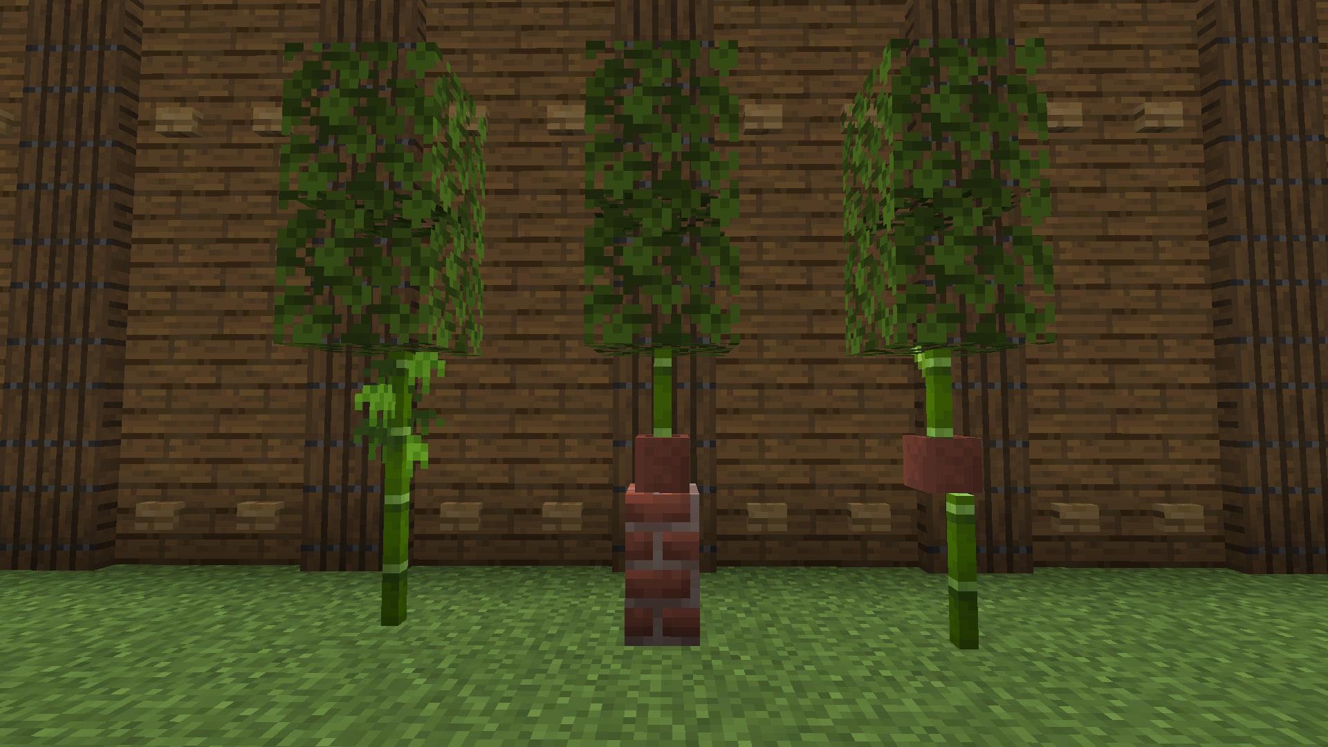 minecraft-1-14-drzewka-bambusowe.png