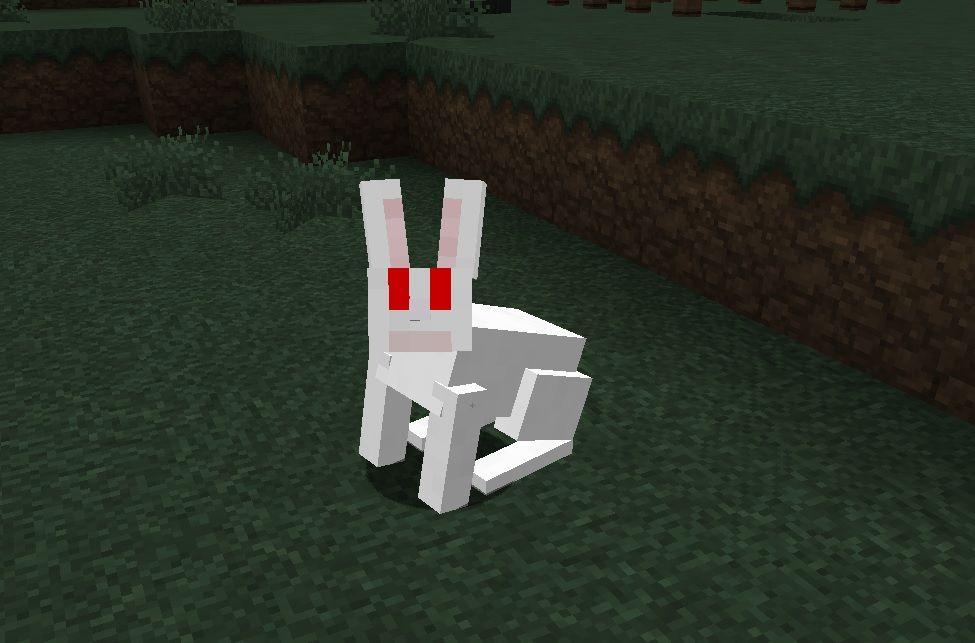 agresywny-krolik-Rabbit-of-Caerbannog