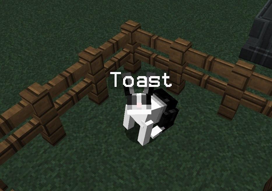 krolik-toast-minecaft-1.8