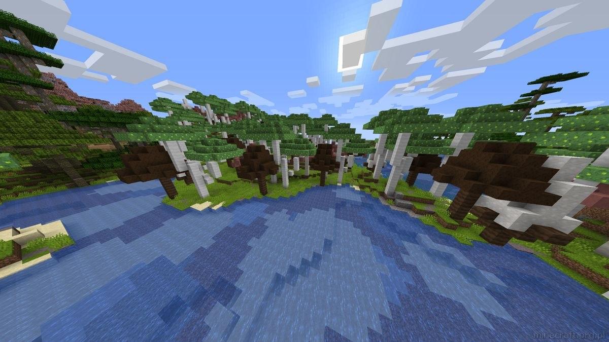 BYG mod grzybowy las