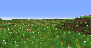 biomes o plenty mod biom pole kwiatow