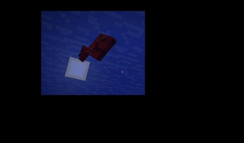Mo-Creatures-Minecraft-lil-ryba