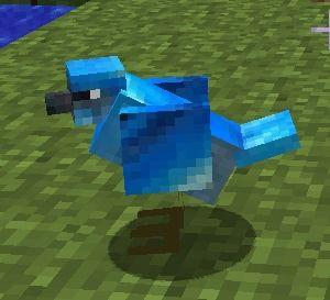 Mo-Creatures-ptaki