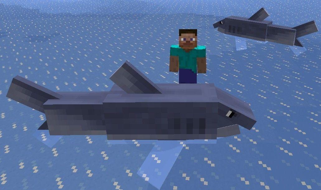 Mo-Creatures-rekin