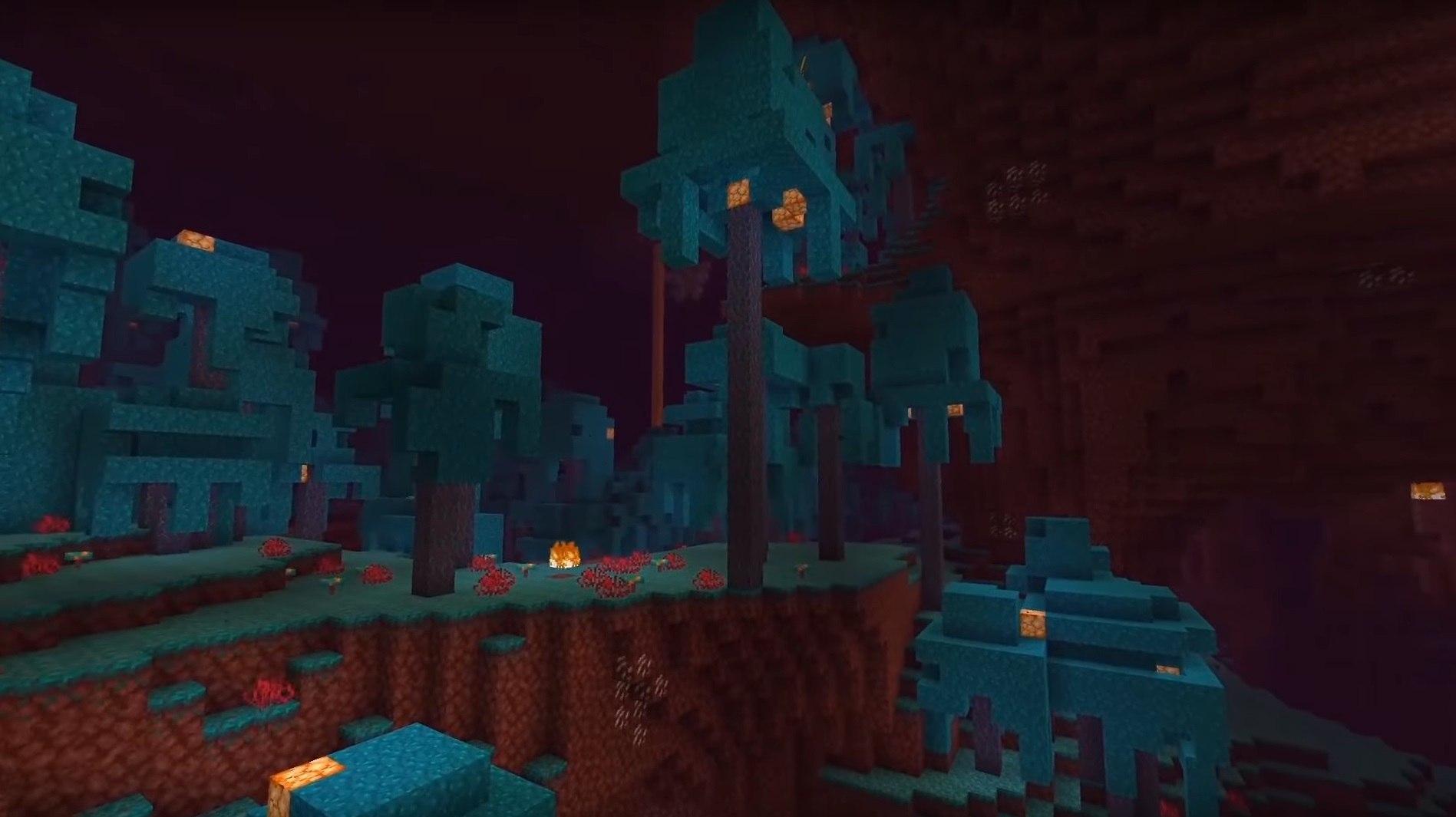 nether update minecraft zdj1