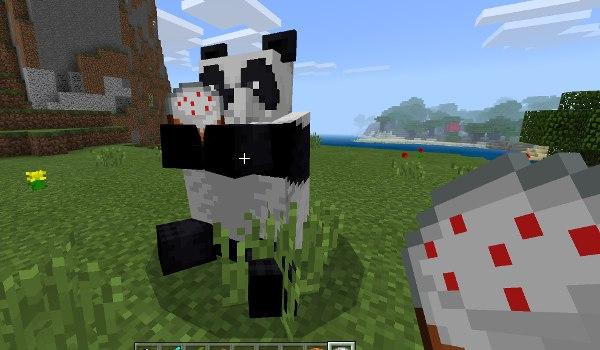 panda 13