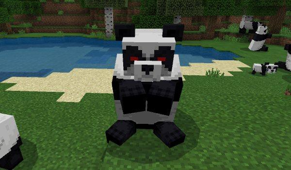 panda 9