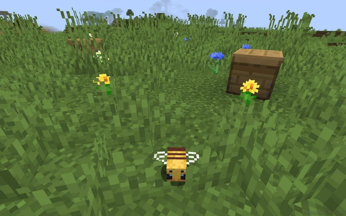 pszczelarstwo w minecraft poradnik 12