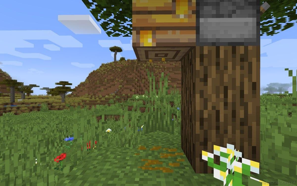 pszczelarstwo w minecraft poradnik 7