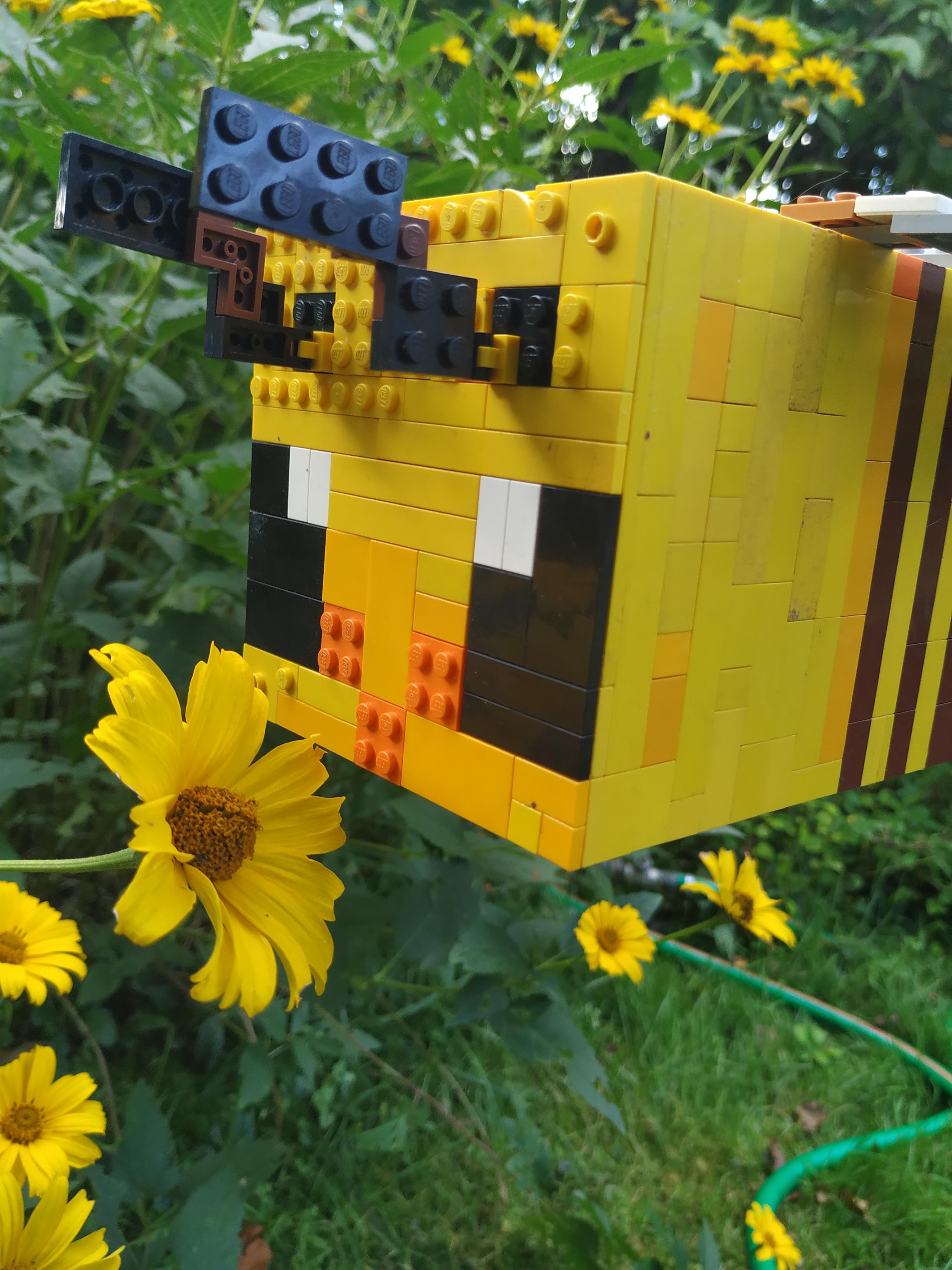 pszczoły_obrazek_007.jpg