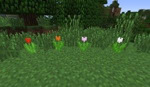 tulipany-minecraft