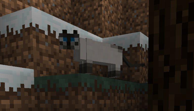 Ocelot--tamed-minecraft-
