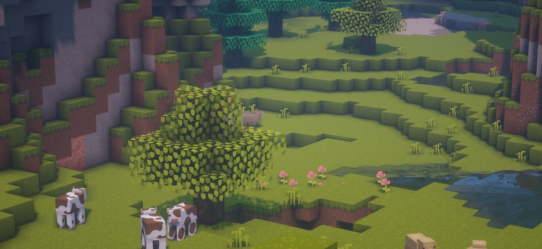 dandelion shadery BSL 1.15.2 minecraft moby 1