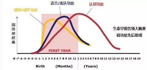 姚晨曬兒子作業引網友怒贊:未來如何輕鬆進名校,讓娃遠超同齡人?